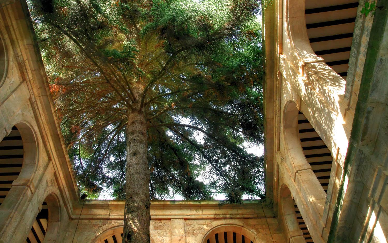 Los lugares abandonados más espectaculares de España Monasterio-de-San-Pedro-de-Arlanza-2