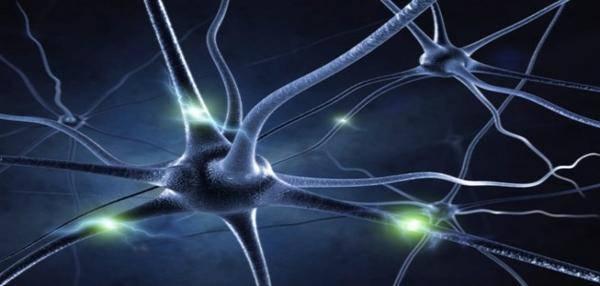 Cerveau, se débarrasser de ses anciennes habitudes : 10 méthodes pour créer de nouvelles 96678bd77cc2f7cc1826e8b037af76b3-l