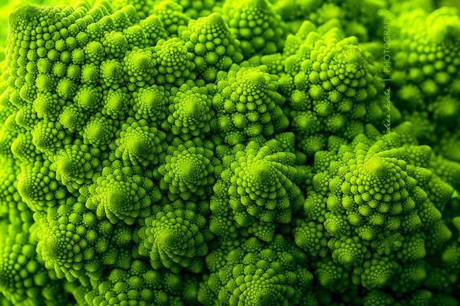 25 photographies époustouflantes de géométrie sacrée dans la nature Romanesco-Broccoli_670