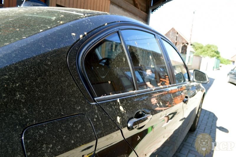 Topic unique : Posez vos questions à Renov'Car Passion -> ND Car Care - Page 4 1526048704-800-x-532px-DSC_0204