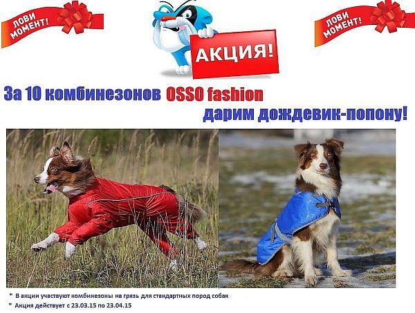 OSSO Fashion - лучшие товары для животных,дрессировки,спорта 28794532eaca918a0c7036190f1b0461