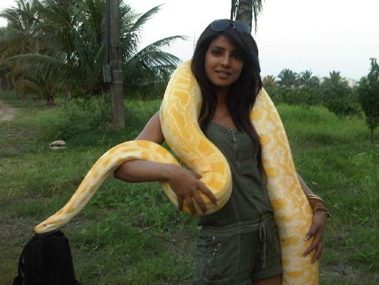 Chopra - Priyanka Chopra (MISS WORLD 2000) Priyanka-chopra-with-a-python