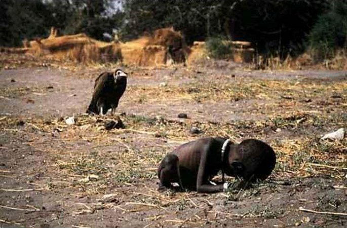 Agavin cvet. The_Life_and_Death_of_Kevin_Carter03