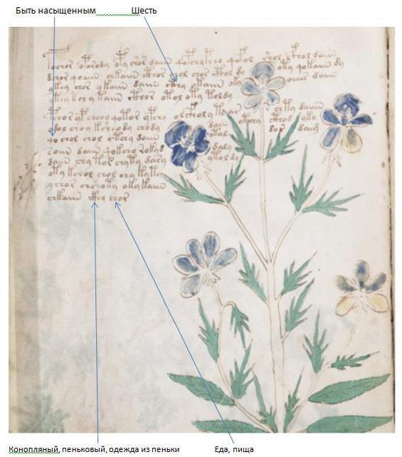 "Research Anichkin Nikolai Matveyevich ""Voynich manuscript indecipherable."" RV%203"