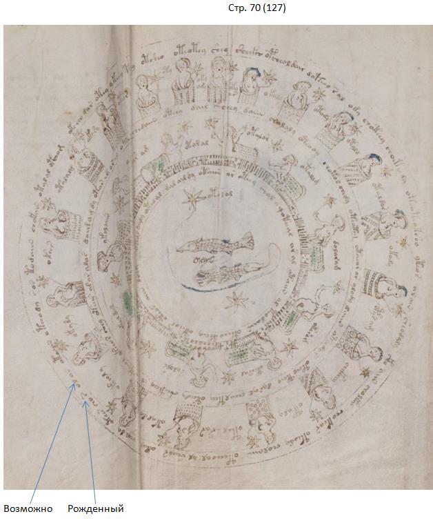 "Research Anichkin Nikolai Matveyevich ""Voynich manuscript indecipherable."" RV%207"