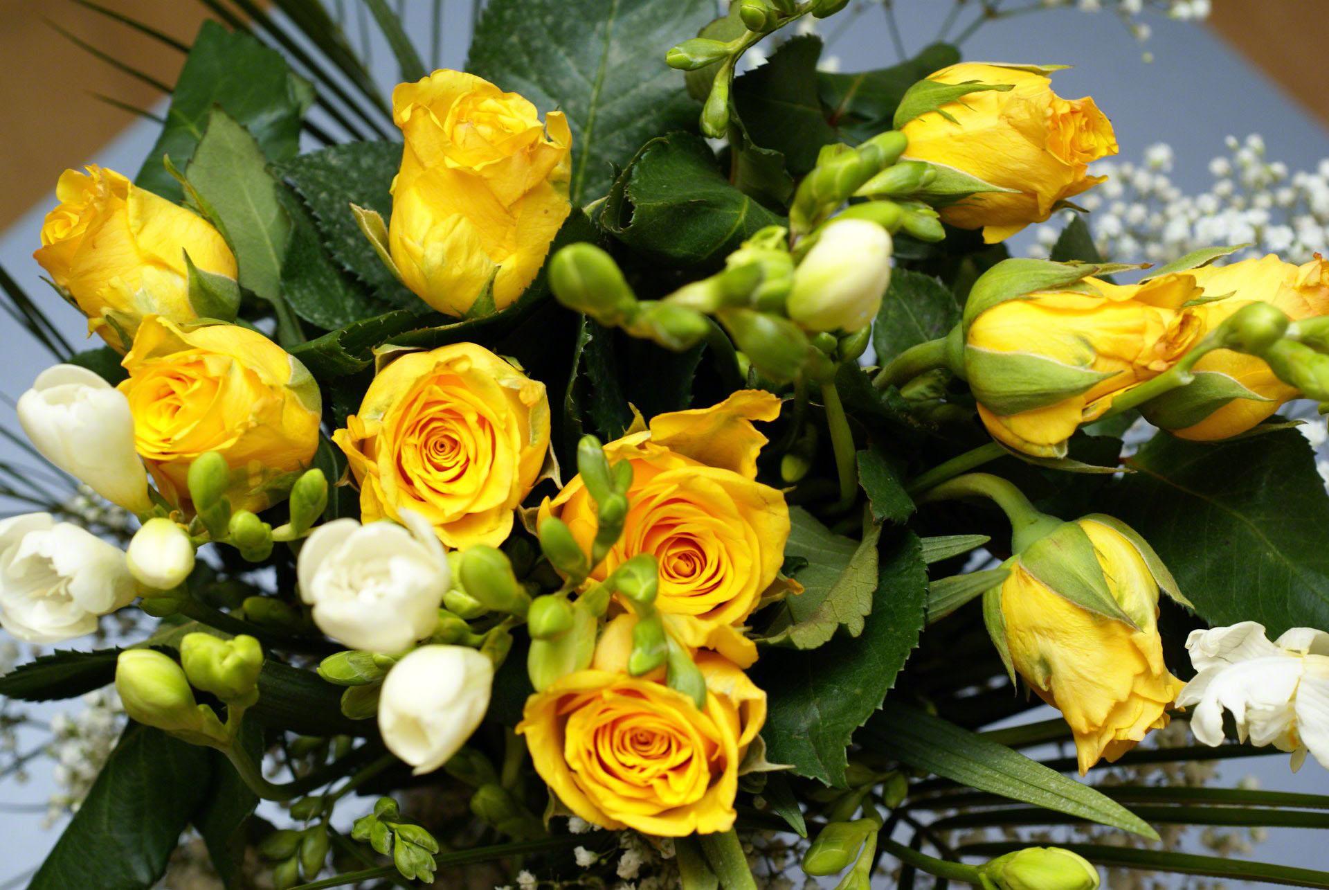 Per a Pantera. - Página 2 Yellow-roses-bouquet-00842
