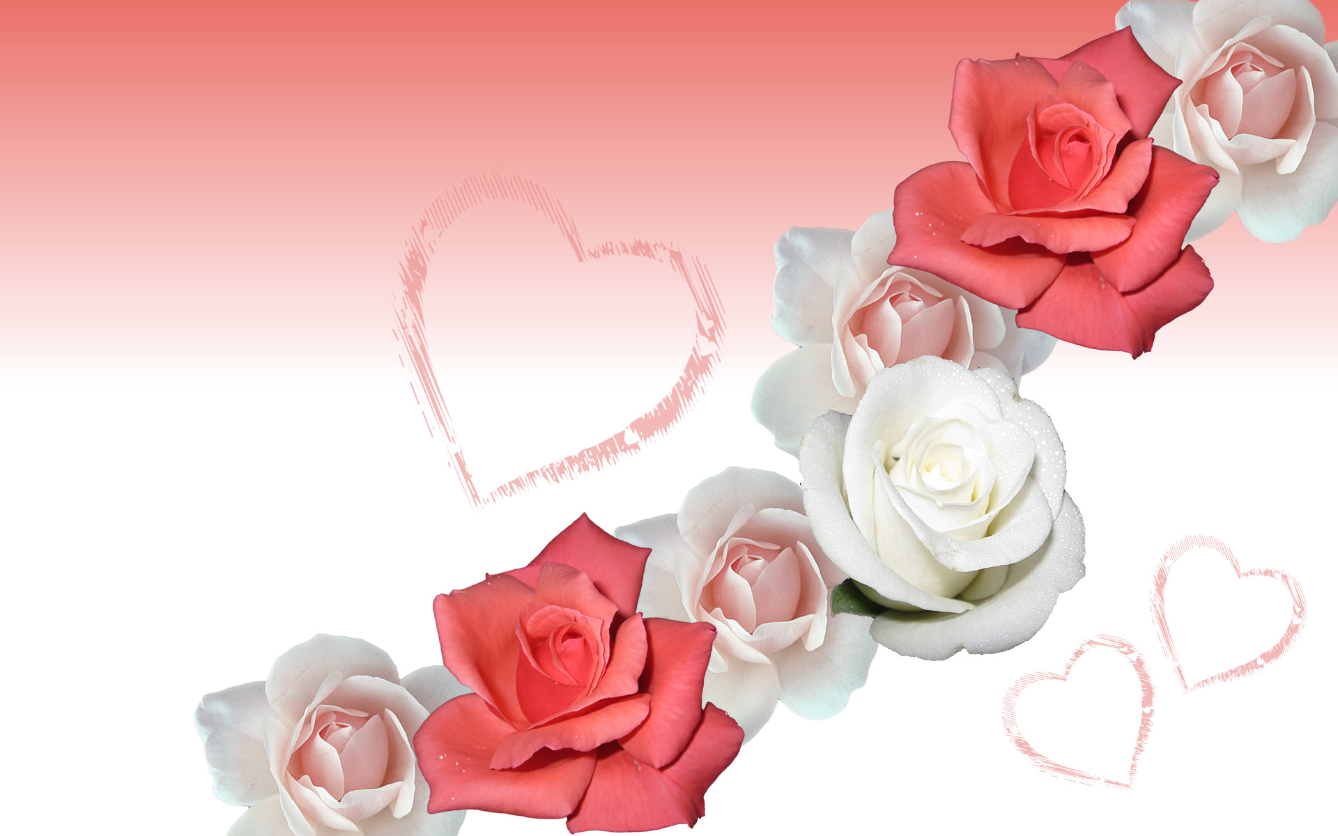 Romantika - Page 4 Flower-rose-wallpaper