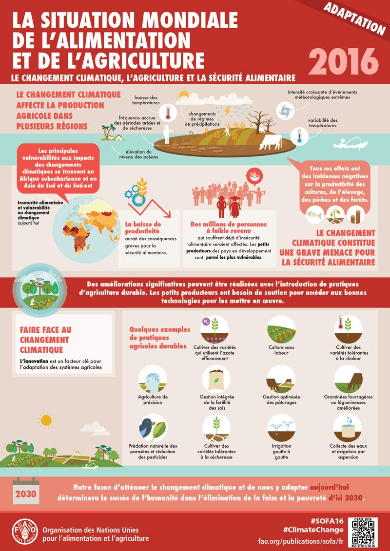 [Infographies] FAO (Organisation des Nations Unies pour l'alimentation et l'agriculture) FAO-Infographic-SOFA2016-adaptation-fr