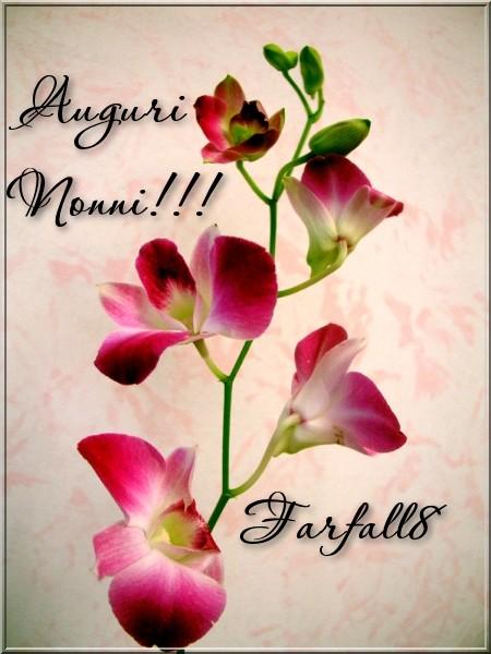 Domenica 2 Ottobre 2011101235635_nonni
