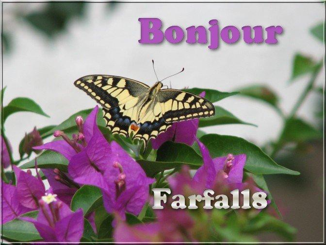 DOMENICA 15 MAGGIO 201651583314_image-farfabo-CB02_4FB816CC