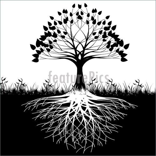 Le pouvoir de l'énergie CHI par un Maître CHINOIS Roots-Tree-Silhouette-1804438