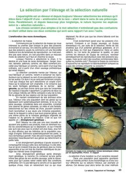 La nature, l'aquarium et l'écologie : nouvelle édition FFA Ecologie_texte_5-fill-250x351