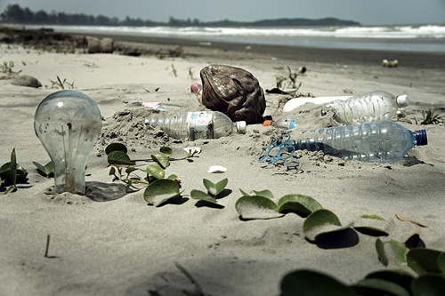 La nature a-t-elle des droits ? Pollution-plage