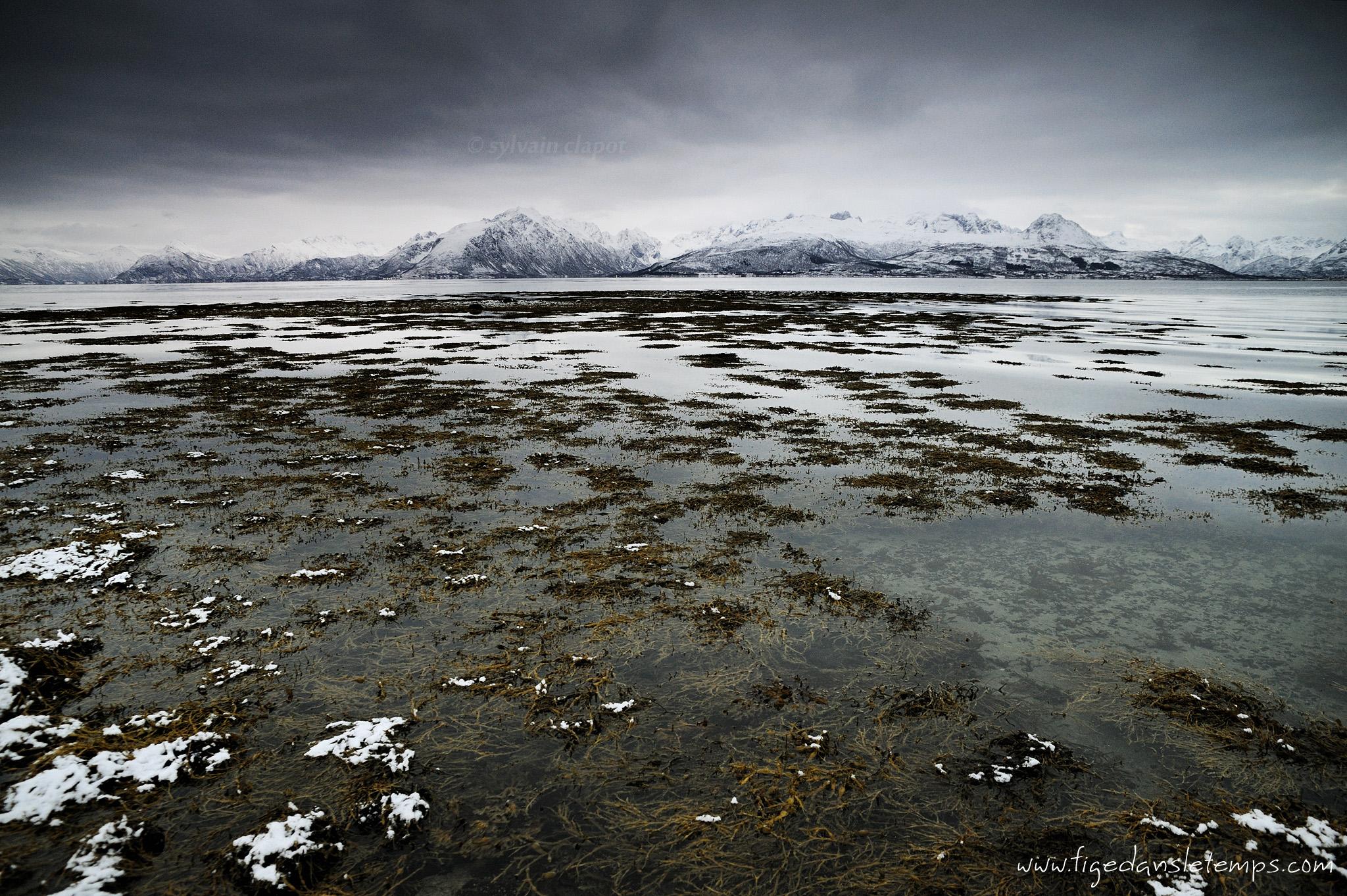 [Norvège 2012] - Jour 6 : 13/11/12 DSC_4559