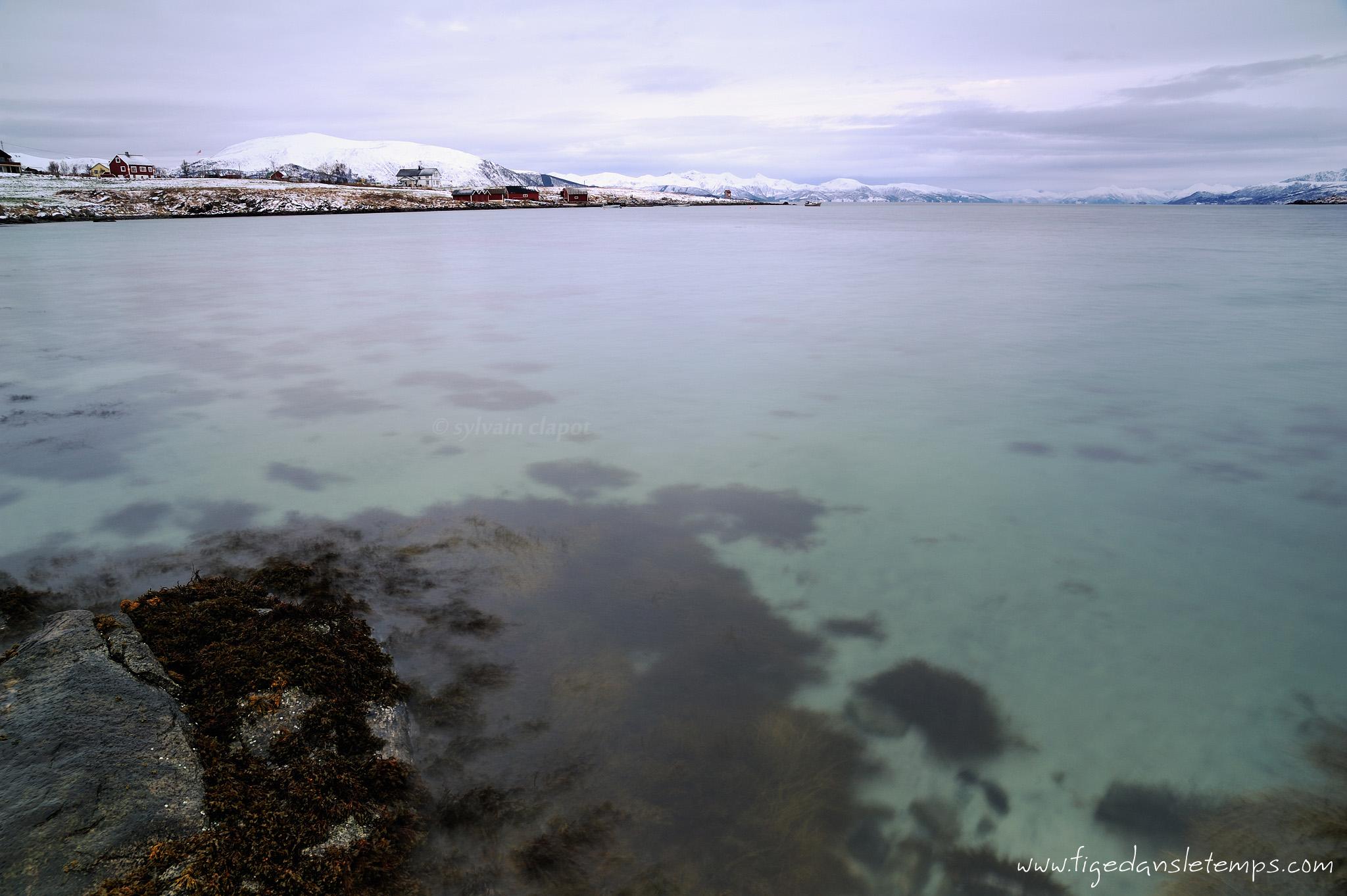 [Norvège 2012] - Jour 6 : 13/11/12 DSC_4726