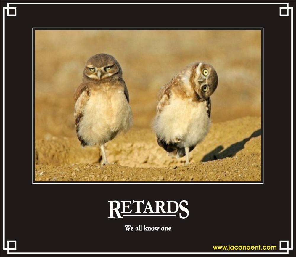 Funny Demotivational Posters 1114200983204AM_Retards