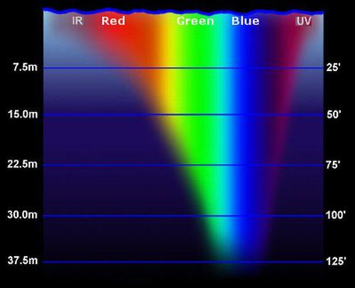 Los colores del cebo y la profuundidad 62_light_spectral_absorption_water1