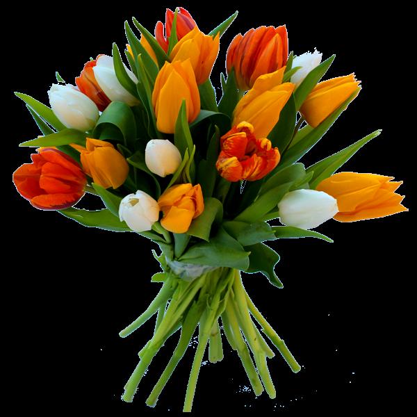 Bonne Fête Lilou Bouquet-de-tulipes