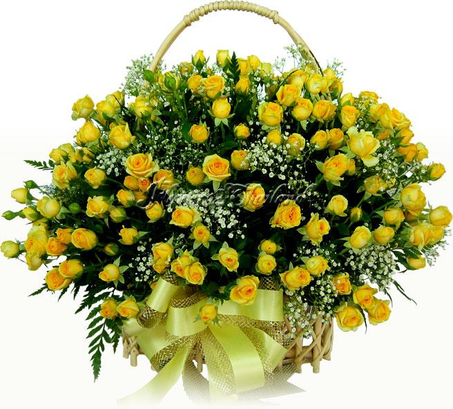 Feliz Cumpleaños Lady marlene.. Flv257a1