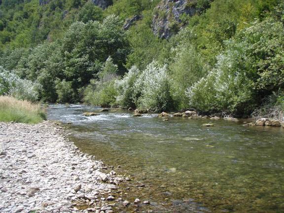 Sve čari Srbije Rzav1