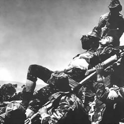 Les quatre armées: terre, air, mer et gendarmerie, comptent, parmi leurs formations qui vont de la compagnie à la division, des unités parachutistes et de commandos. Para_blesse