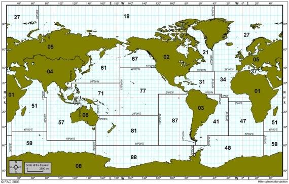 Pesce: come sapere da dove viene _fao_world_2003.570