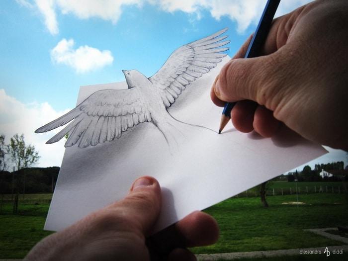 Anamorfismo: i capolavori di Alessandro Diddi Bird.1500x1000