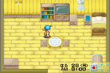[Hướng dẫn] Harvest moon: Friends of mineral town House_inside