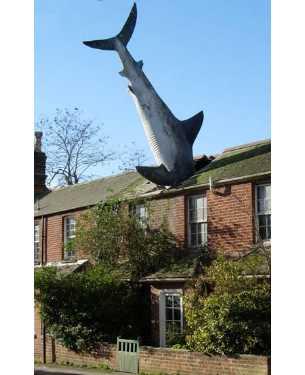 Čudne statue širom sveta - Page 4 Amazing_statues_the_shark
