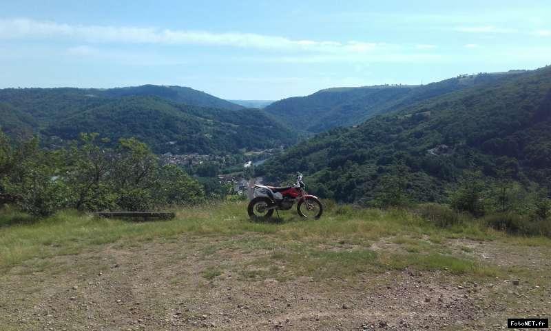 montesa 4 ride - Page 4 14960498501