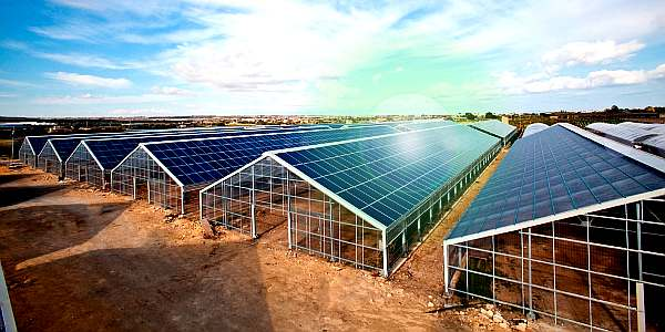 Esamir National News Network  - Page 2 Serra-fotovoltaica-6_1
