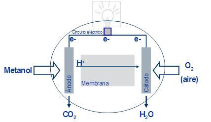 """Biomasa: la renovable neutra para las instituciones que las asociaciones ecologistas califican de """"energía negra""""  Fuel_C1"""