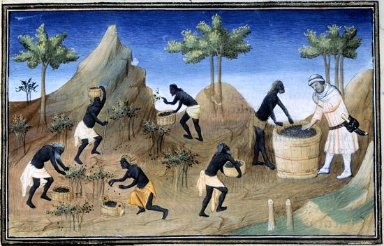 LES ANECDOTES  HISTORIQUES,  DROLES OU ENCORE INSOLITES - Page 31 Cher-Poivre