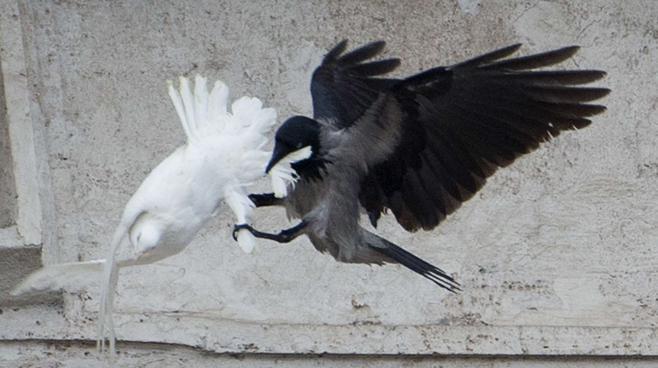 Affrontements en Ukraine : Ce qui est caché par les médias et les partis politiques pro-européens 3286601