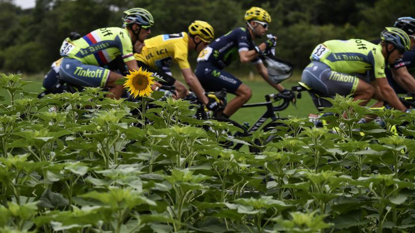 Suivez-vous le Tour de France cette année ? 8977077