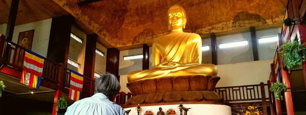 """""""Admiré et même vénéré"""" : le dalaï-lama très attendu par les bouddhistes de France 10710881"""