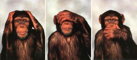 Revenu de base ou revenu citoyen - Page 2 Trois-singes