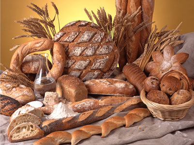 Comment cultiver du blé sans apport en engrais et produits chimiques Le-pain-c-est-bon