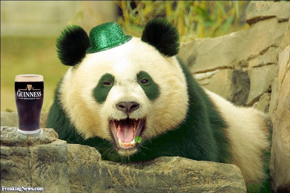 La guerre de la Loutre - Page 3 St-Patrick-s-Day-Panda-38862
