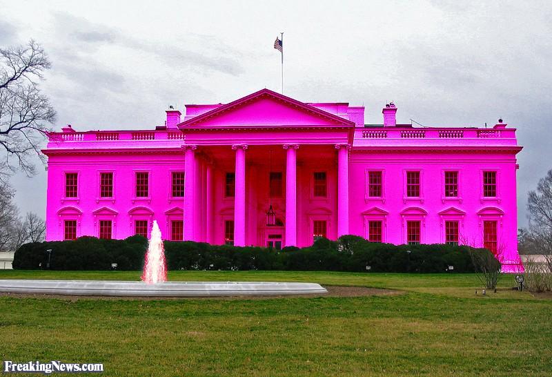 John Boehner: Paul Ryan for president The-Pink-White-House--73277