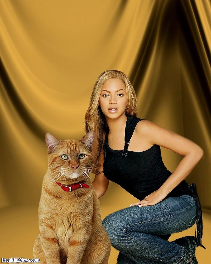 #SoledadLlevameTopic (31) - Página 26 Beyonce-and-Her-Giant-Cat--89239