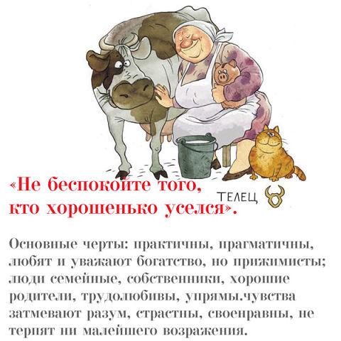 Знаки зодиака в бабках