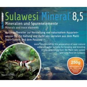 une eau adapté au biotope des lacs de sulawesi 113-195-large