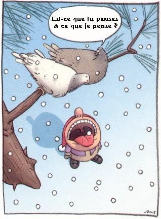 Les Saisons - Page 6 Flocons