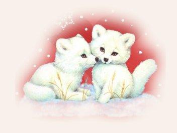 صور جديدة لعيد الحب happy valentine Valentine-image
