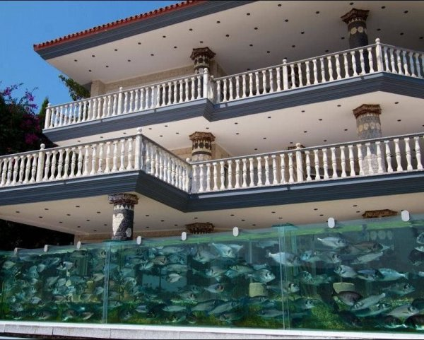 Baš neobično 1374073668_zabor-akvarium-3