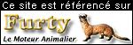 Furty le moteur de recherche Animalier de Photos-Animaux.com