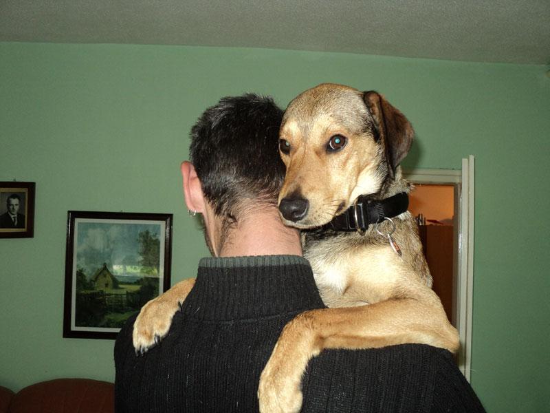 Volim te kao prijatelja, psst slika govori više od hiljadu reči - Page 4 30.04.2011_Johnny
