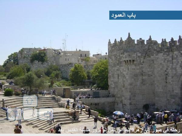 زيارة إلى القدس الشريف مع صور رائعة 39