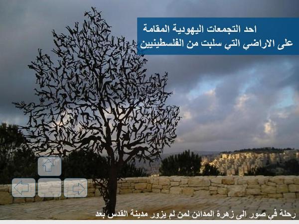 زيارة إلى القدس الشريف مع صور رائعة 65